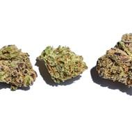 Chimchard's Choice: Top Five Marijuana Strains in St. Louis