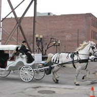MTC Fight to Regulate Horse Carriages Gains a New Party: City of St. Louis