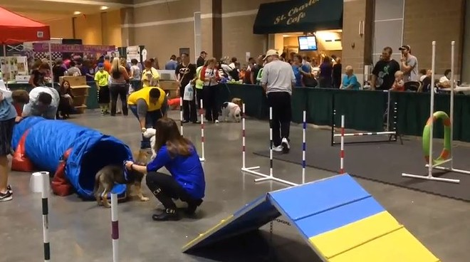 The St. Charles Convention Center has hosted the St. Louis Pet Expo every year since 2009. That streak ends this year. - VIA YOUTUBE