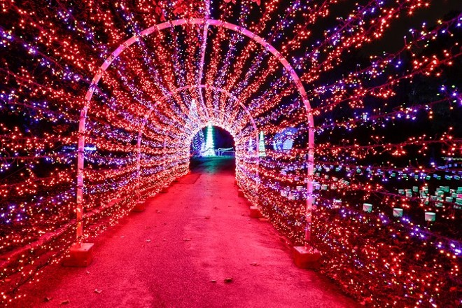 It's the most wonderful time of the year: Garden Glow time! - WESLEY SCHAEFER/MOBOT