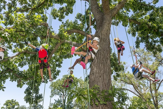 You don't have to climb the trees, but you can't stay inside all summer. - COURTESY OF GREAT RIVERS GREENWAY