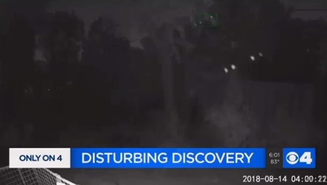 A disturbing discovery, or just a paranoid one? - SCREENSHOT VIA KMOV