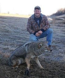 Brad Harris and another coyote capture. - IMAGE VIA