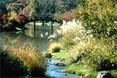 The Japanese Garden - MOBOT.ORG