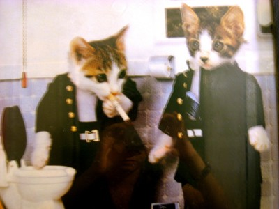 smokingcats.jpg