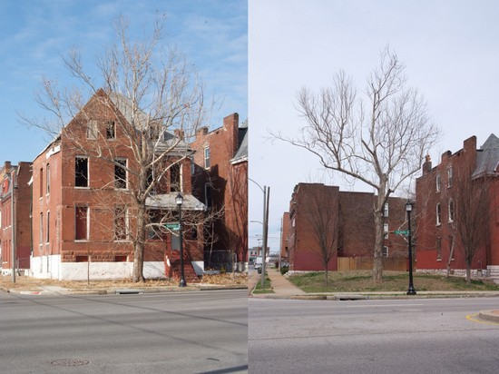 Six years later, the tree remains. - PHOTOS BY ERIC FOGLEMAN