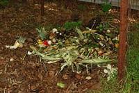 Today we toast compost. - FLICKR.COM/PHOTOS/MISSMOSSIE