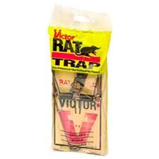 rat_trap.jpg
