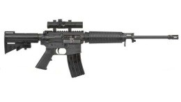 This is the kind of gun used to kill 27 in Newtown - IMAGE VIA