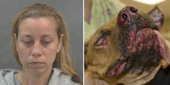 Adrienne Martin bragged on Facebook about burning Brownie, a pit-bull mix that would not survive its injuries.