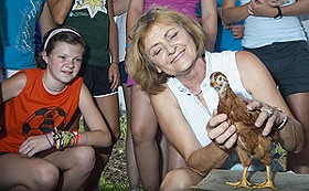 Janelle Criscione sends one of her chickens off to college. - IMAGE SOURCE