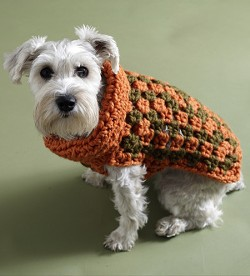 Authorities have narrowed their suspects to a dog in an alpaca wool sweater.