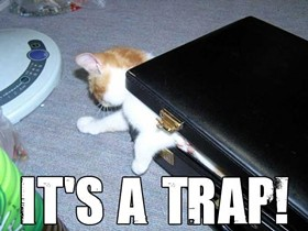 its_a_trap_got_caught_s500x375_44104_580.jpg
