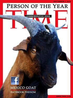The Mexico Goat: Eat this, Franzen. - IMAGE VIA