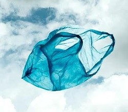 Wind bag: Wash. U. students want the plastic to go bye-bye.