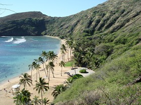 Ah, Hawaii. Land of white beaches, blue water, beautiful palm trees, and, um, second basemen, apparently.