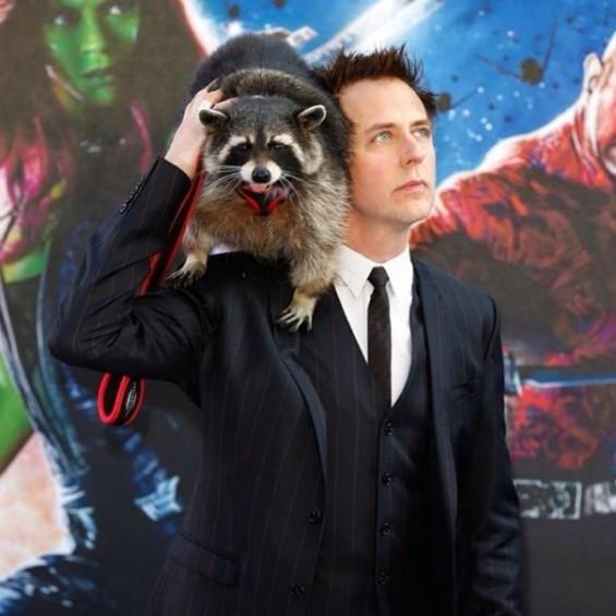 James Gunn has a thing for raccoons. - JAMES GUNN   INSTAGRAM