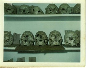 The DNR has been keeping Native American bones like these for decades. - IMAGE VIA
