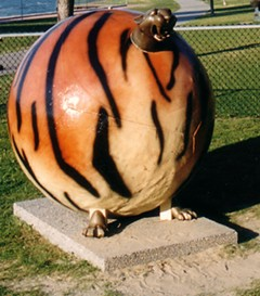 Get it? It's a tiger, but it's also a ball. So it's sort of like what got Tiger into trouble! You know, like balls! Oh, come on! That's funny! Man, tough room.