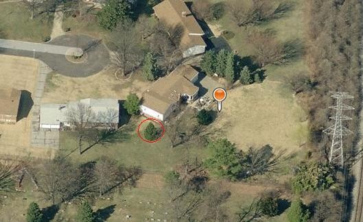 The Alvarez house (depicted with marker) sits at the end of a cul-de-sac. Billie Alvarez says the officer jumped out from behind the pine tree (circled) dividing her property from the neighbor's.