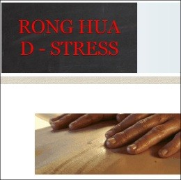 Screen cap of Rong Hua D-Stress' website - IMAGE VIA