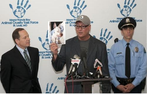 Stray Rescue founder Randy Grim, center, shares updates on St. Louis' problems with cruelty to animals next to Mayor Francis Slay. - DANNY WICENTOWSKI