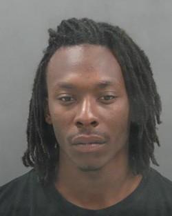 James Palmer faces a dozen charges regarding vehicle break-ins.