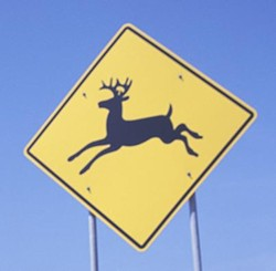 Caution: Leaping conclusions ahead.