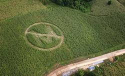 A farmer expresses his distaste toward Monsanto.