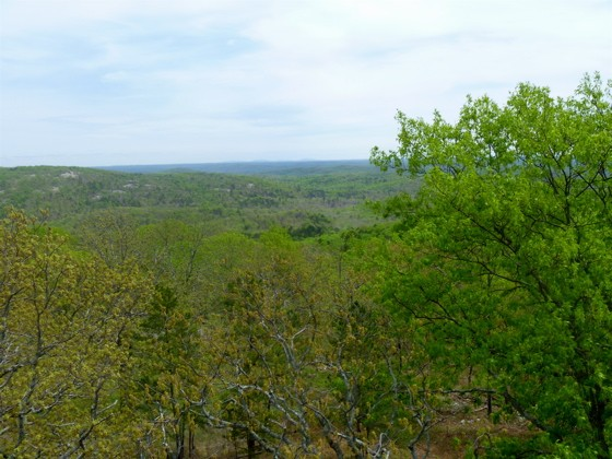 Peck Ranch, as viewed from the top of Mt. Stegall, its highest point. - AIMEE LEVITT