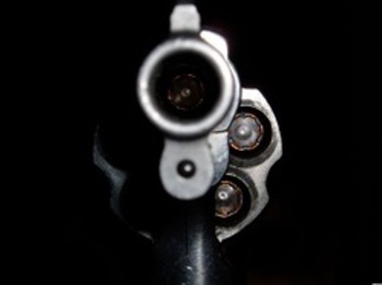 gun_large_thumb_550x411_thumb_550x411.jpeg