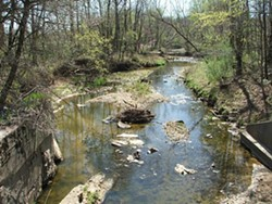 "Peruque Creek running through Warren and St. Charles counties is an example of an ""unclassified"" waterway. - MISSOURI COALITION FOR THE ENVIRONMENT"