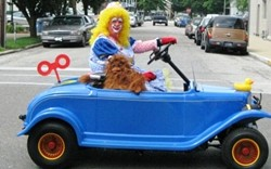 Ass Clowns take to the road this week.