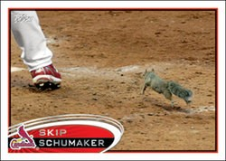 Rally Squirrel, with Skip Schumaker (left) - (C) TOPPS INC 2012