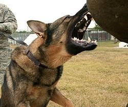 U.S. AIR FORCE PHOTO/ROBBIN CRESSWELL