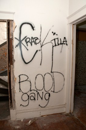 Gang graffiti in abandoned apartment building where dogs were found tortured - IMAGE VIA