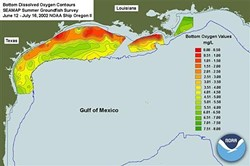This year's dead zone from Mississippi River flooding could exceed the 2002 record shown here.