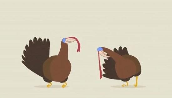 turkeydubstep.jpg