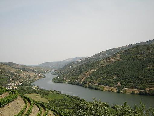The river Douro in Portugal - JOAO MIRANDA, WIKIMEDIA COMMONS