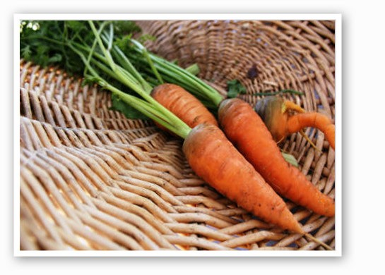 Get some fresh carrots from a farmers' market this weekend | Pat Kohm
