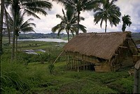 """An actual nipa hut in the Phillippines. - USER """"EMIR214,"""" WIKIMEDIA COMMONS"""