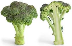 Fuck you, cruciferous vegetables. - IMAGE VIA