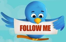 twitter_bird.jpg