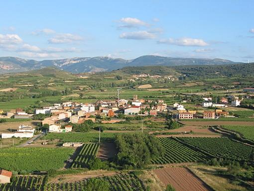 """A vineyard in Spain's Rioja region - USER """"GURREA,"""" WIKIMEDIA COMMONS"""