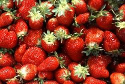 Farm fresh or Franken-fruit? - IMAGE VIA