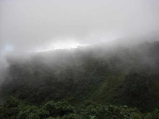 A Costa Rican view. - ZACH DYER