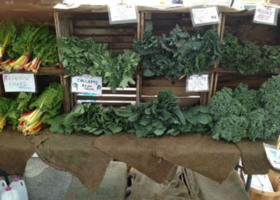 Farmers' markets are starting to open! | Zach Garrison