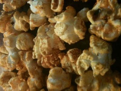 Poptions! Toasted Rav Popcorn - ROBIN WHEELER