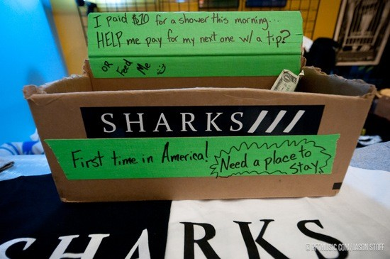 OPENER SHARKS NEEDS SHOWER MONEY. PHOTO BY JASON STOFF