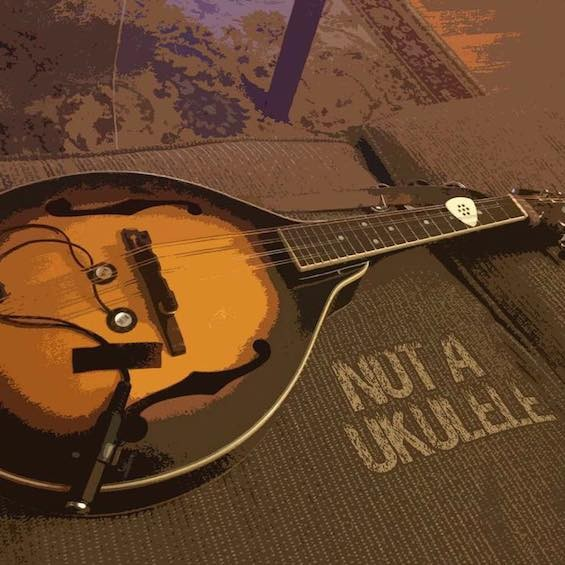 "Don't call it a ukulele. - BRYAN RANNEY'S ""NOT A UKULELE"" TOUR PAGE"